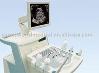 SW-US60 LIVE 4D usg machine fluoroscopy Diagnostic b ultrasound scanner doppler ultrasound scanner