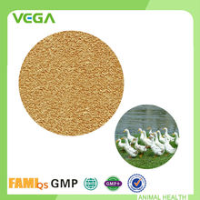 China fabricante de alimentación probióticos Bacillus Subtilis