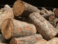 Rubber wood sawn timber with good quality from Vietnam