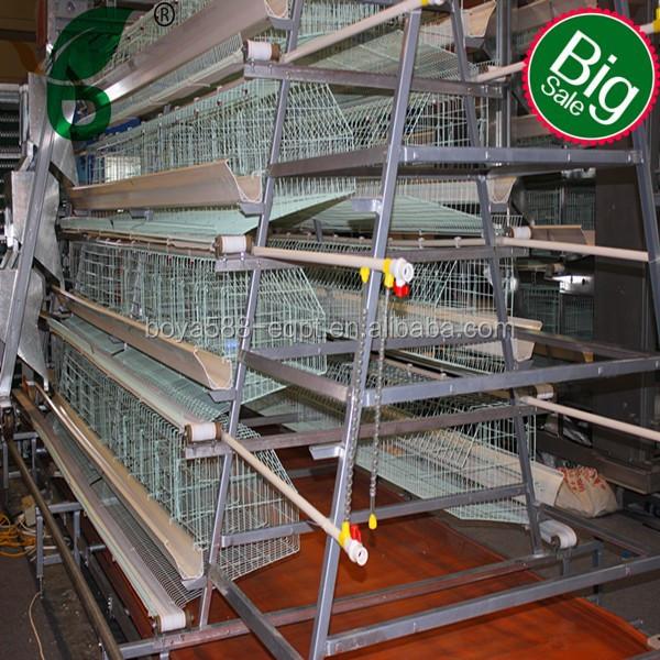 Poultry Farming in Kenya-layers For Kenya Poultry Farm