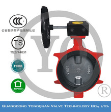 """ZSDF-B Worm Gear Operated Lug Type Concentric Rubber Lined Butterfly Valve, DN 2""""-12"""", PN 1.6/2.5 MPa, with CCCf and TS"""
