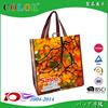 China pp woven bag,Promotional non-woven bag, non woven gift bag