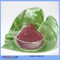 compellent quality freeze dried acai berries