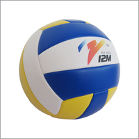 The best gift for boy the professional volleyball