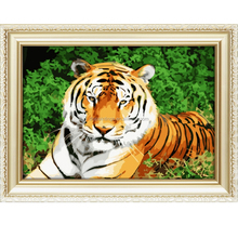 Best selling tiger oil painting for bedroom diy paint by number