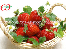 Choice Grade Canned Strawberry,Canned Fruit,E120,E124,E129 Colorant