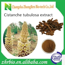 Herb Medicine Cistanche Tubulosa Extract for women and men aphrodisiac