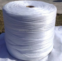 cable filler material/flame retardant Mica tape/low smoke zero Halogen Flame retardant pp filler yarn
