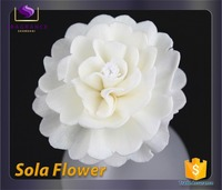 You can import form China environmental friendly sola flower