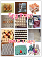 2015egg grading packing machine new design double-turnover fruit/egg/shoes trays forming machine
