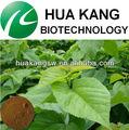 extração solvente mulberry extrato da folha