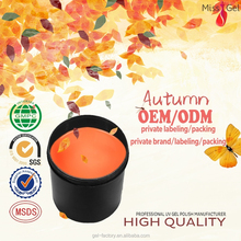 2015 autumn colours nail art soak-off salon professional polish gel,uv gel for nail