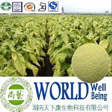 Hot sale Tobacco extract/Solanesol 98%/Tobacco leaf extract/Antisepti plant extract