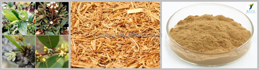 chinese raw herbs suppliers