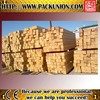 Russia White Birch hardwood lumber