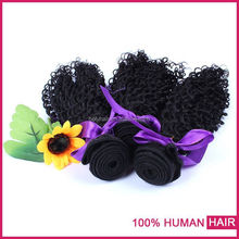 Large promotions virgin malaysian kinky curly hair wholesale malaysia hair weave made in China