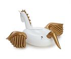 Jc inflável Pegasus piscina flutuante