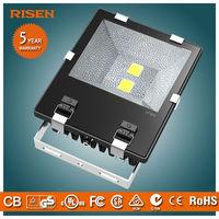 CE RoHS 100w 12 Volt Replacement Led Flood Light Bulbs
