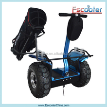 Most Popular Cue Tips 14mm Scooter Electrical Golf Cart Scooter with Holdbag