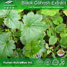 Black Cohosh Extract, Black Cohosh Extract Triterpene glycosides, Black Cohosh Extract 2.5% HPLC