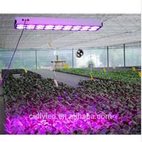 CIDLY Professional Veg Bloom LED Grow Light 600W Equal to 1000W HPS MH Grow Lights