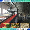 Continuous belt dryer for dehydrated fruits and vegetables