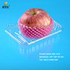 Bio-degradable disposable lunch plastic fruit packaging tray SGL-1410