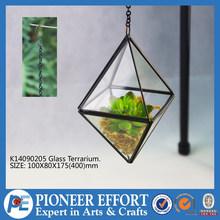 Hanging glass plant terrarium