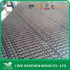 Linyi best manufacturer of 15mm phenolic laminated plywood phenolic coated plywood