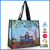 Eco Friendly PP Non Woven Shopping Bag