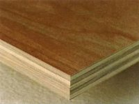 All Types of Plywood