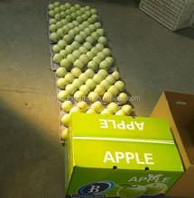 new crop 2015 Delicious Golden apple