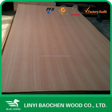 1220x2440 E2 glue 3mm / Sapele fancy plywood for decoration from Linyi plywood factory