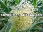 Corn Stigma Extract Powder--The latest price