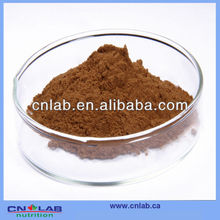 Kosher Instant Black Tea Extract Powder