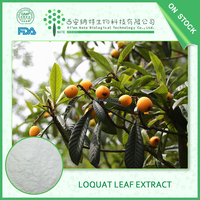China Supplier loquat leaf plant extract p.e. 98%