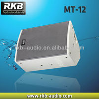 "12"" acoustic monitor speakers"