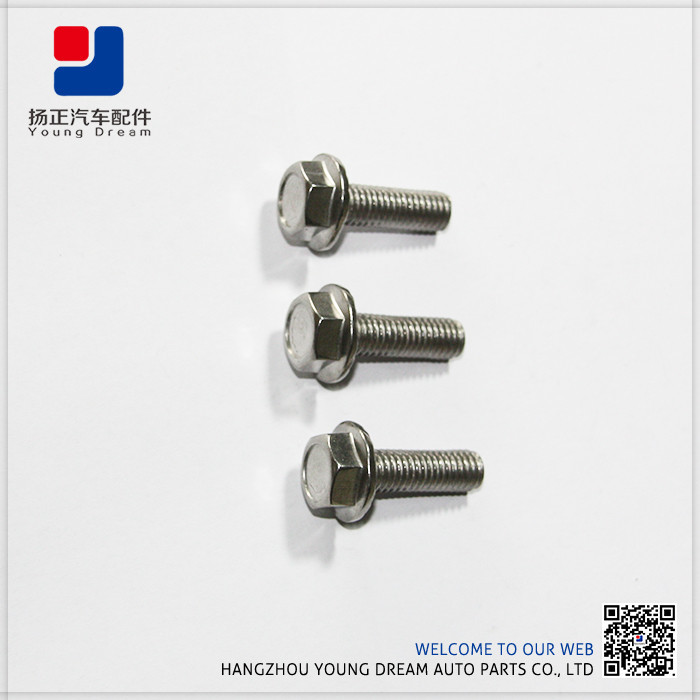 Made in China Quality-Assured Special OEM Factory Hexagon Bolt