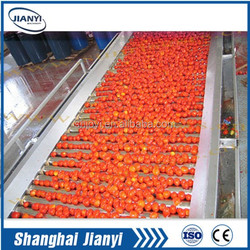 tomato paste production line/processing machine/plant