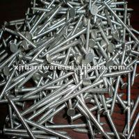 Ring Shank Aluminum Nail