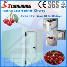 Mini cold storage room, cold room for cherry with CE