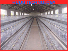 60 capacity broiler cage/good price steel bird cage materials/commercial broiler battery cage