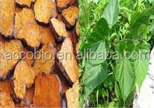 100% Natural High quality Polygonum multiflorum Extract powder/4:1,10:1,20:1