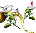 Puro óleo de jojoba orgânicos