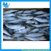 Caliente venta sardina de pescado para cebo