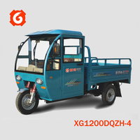 High quality/cheap price transport 1200W three wheel tuk/truk/trike/tricycle made in China