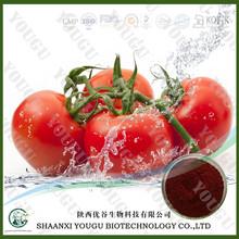 Botanical extract manufacturer supply lycopene supplement with antioxidant benefits