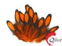 Fashion chicken plumage dyed orange laced hen loose saddle feathers
