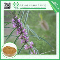 High Quality Motherwort Extract Stachydrine Hydrochloride 10%