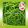 2015 hot selling frozen green chili curly shape, IQF fresh hot green chili